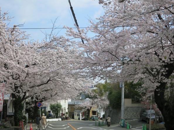 鎌倉山 (4)